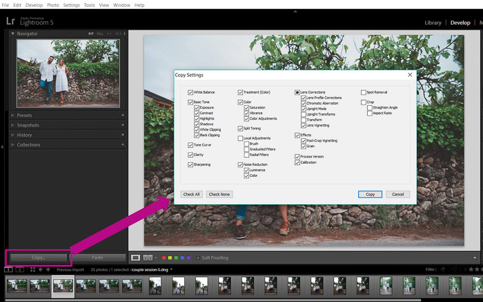 How to Copy Settings from One Photo to Another in Lightroom